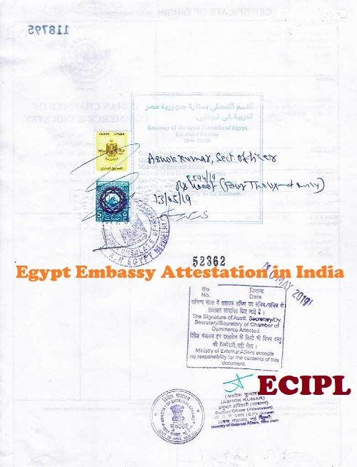 Certificate Attestation from Egypt Embassy India